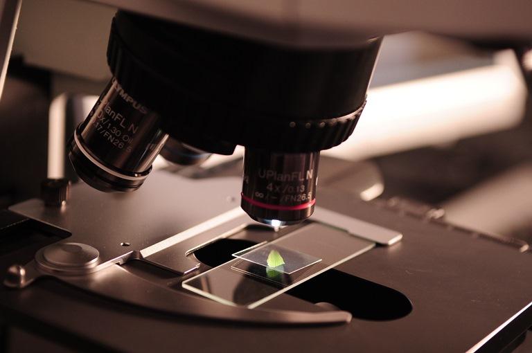 生物分子可视化研究将 2017 诺贝尔化学奖纳入口袋