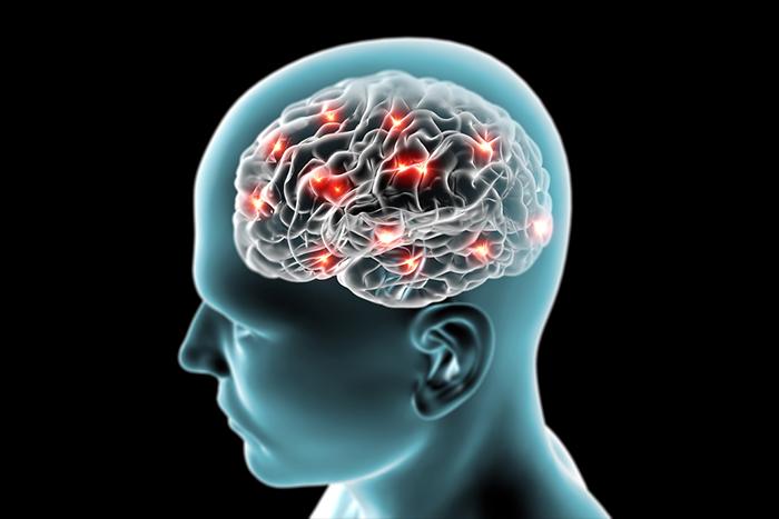 2014 诺贝尔生理学或医学奖颁发给发现构成大脑定位系统的细胞的